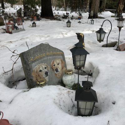 Hautakivi eläinten hautausmaalla.