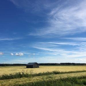 Blå himmel över en ensam lada.