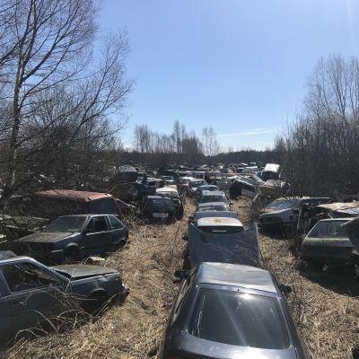 Bilvrak på Smeds bilskrot i Korsholm