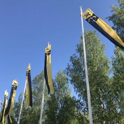 Etelä-Savon maakuntaviirit liehuvat tuulessa.