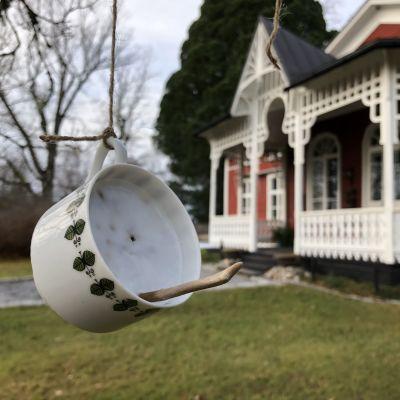 Fågelmat i kaffekopp hänger från en kvist framför Strömsövillans veranda