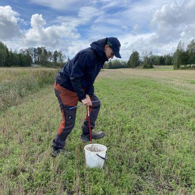 Emil Hästbacka tar jordprover från åker i Raseborg.