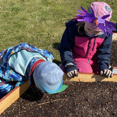Barn som undersöker innehållet i en blomlåda.