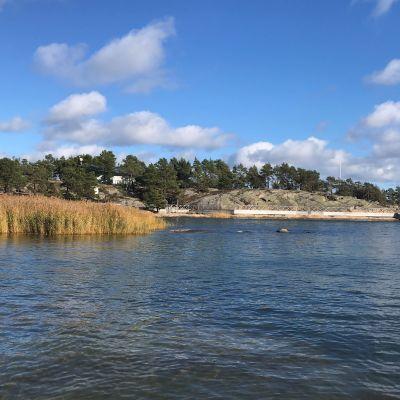 Strandbild med vass och båtbrygga. På avstånd syns en av Airiston Helmis fastigheter.