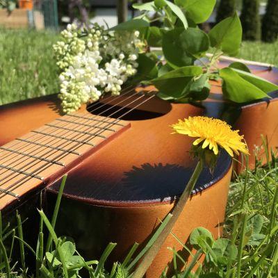 Akustinen kitara ruohikolla, jonka päällä syreenin kukka ja etualalla voikukka