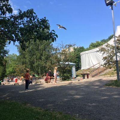 äventyrsparken i kuppis. barn som leker, sandiga gångar.