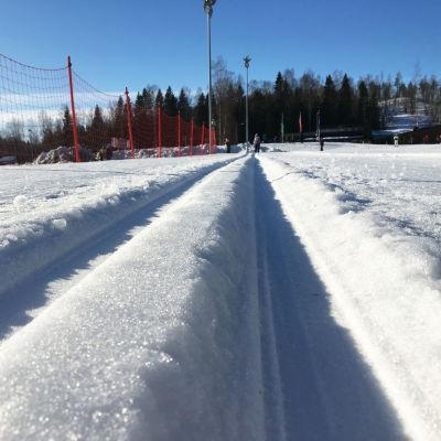 Närbild på skidspår en solig vinterdag.