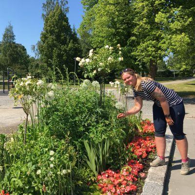 Kuvassa Sini Sangi on hoitaa kukkaistutuksia Länsipuistossa