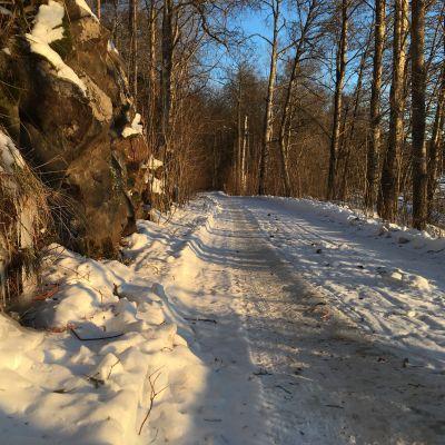En vintrig väg.