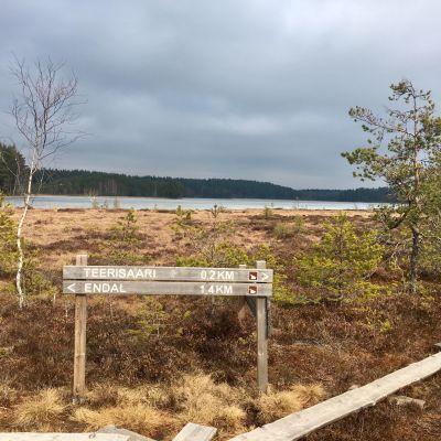 Näkymä Teijon kansallispuistosta