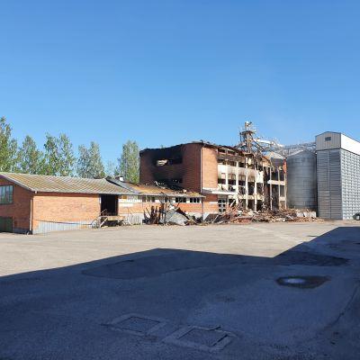 Tulipalossa tuhoutunut Liperin Mylly kesällä.