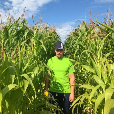 Maatalousyrittäjä Tarmo Ilola seisoo maissipellon keskellä.