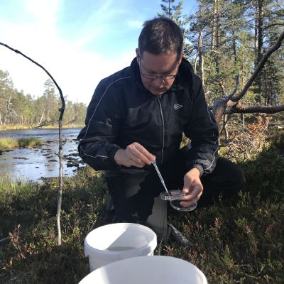 Tutkija Jouni Salonen kerää pipetillä raakkujen toukkia.