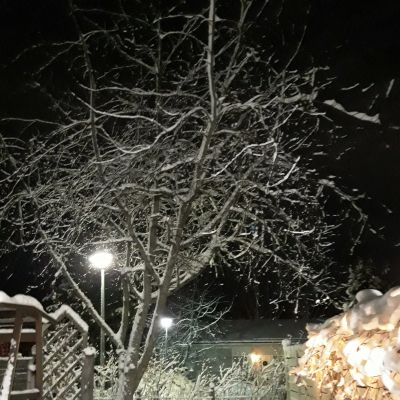 Luminen rivitalon piha ulkovalojen loisteessa.