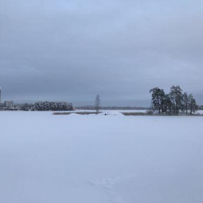 Talvinen Kallavesi jäätyi 5. tammikuuta 2021.