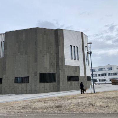 Rovaniemen kaupungintalo, edustalla ihminen kävelyttää koiraa.
