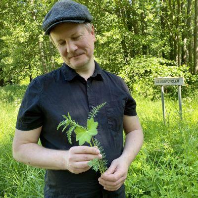Yrttiopas Jyrki Pirkkalaisen kädessä on kaksi kasvia: siankärsämö ja poimulehti.