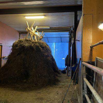 Perinteisen kekripukin rakentaja aikoo eläköityä Kajaanin kekrijuhlilta
