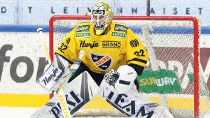 Niko Hovinen vaktar KalPa:s mål i ishockeyligan.