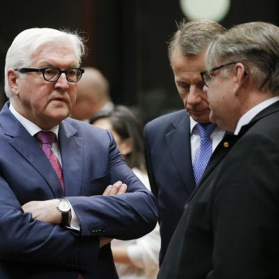 Tysklands utrikesminister Frank-Walter Steinmeier diskuterar med utrikesminister Tmo Soini