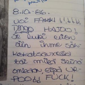 Ote päiväkirjasta, kun Dingo hajosi, 8.10.1989