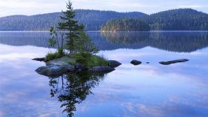 Isojärvi nationalpark.