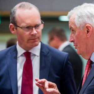 Irlands utrikesminister diskuterar med EU:s Brexitförhandlare Michel Barnier i Bryssel.