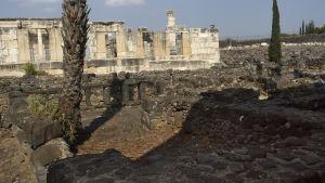 Maailman uskonnot. Uskonto. Juutalaisuus. Pyhä maa, Israel. Kapernaumin rauniot.  Kapernaum, muinainen keupunki, jossa Jeesus asui ja opetti. Synagoga. Synagogan  rauniot.,