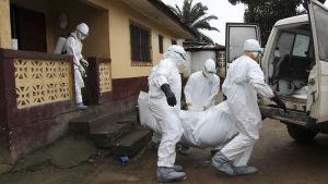 Sjukskötare i Liberia bär ett ebolaoffer.