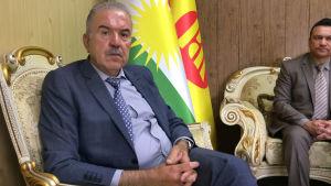-Islamiska statens terrorister återuppstår, säger Hoshyar Siwaily, kurdiska KDP:s utrikesansvarige.