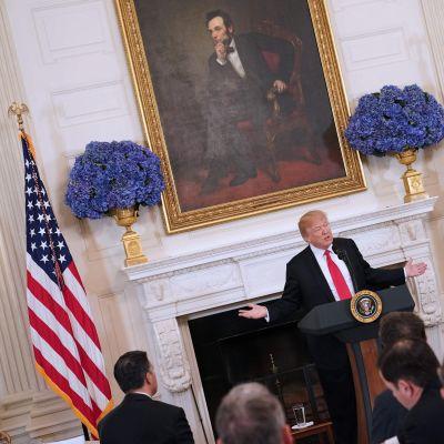 Donald Trump i talarstolen i Vita huset