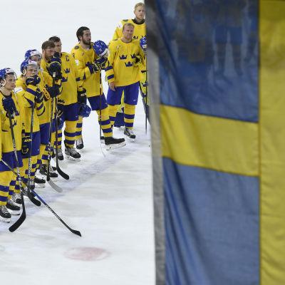 Sverige vann A-gruppen i VM.