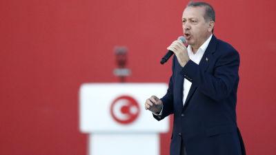 2 000 dodade i turkisk aktion
