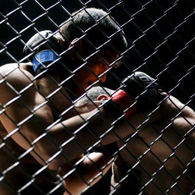 Vapaaottelu Mixed Martial Arts MMA yleiskuva kuvituskuva