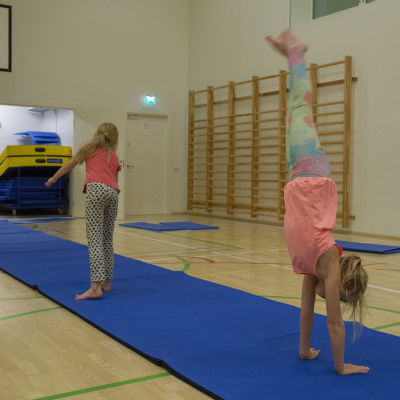 Lasten liikunta / Eevi ja Hilda/ Viikintoimipiste 28.01.019