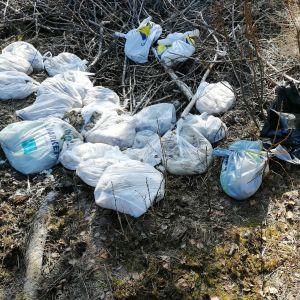 Soppåsar i naturen