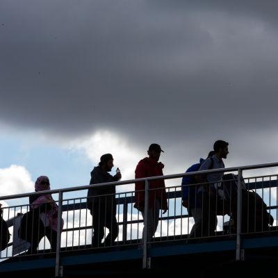 Flyktingar vandrar över bro.