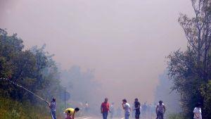 Skogsbränder nära Selce i Kroatien.