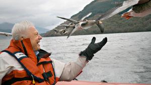David Attenborough – luonnon asialla, yle tv1