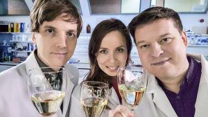 Prisma Studion viiniraati, kemisti Veli-Matti Ikävalko (vas.), toimittaja Henna-Leena Kallio ja viiniasiantuntija Ilkka Sirén laittavat kuparikolikkovinkin testiin.