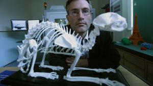 Tutkijat selvittävät, mikä rooli pyhillä eläimillä oli muinaisten egyptiläisten uskomuksissa?