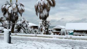 Stranden Ostia i Rom är täckt av snö.