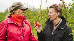 Mies ja nainen seisovat omenaviljelmän keskellä, miehellä omena kädessään.