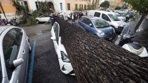 En bil i Rom råkade ut för stormens framfart 29.10.2018