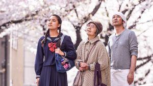 Kaksi naista ja mies seisovat kirsikkapuiden alla.