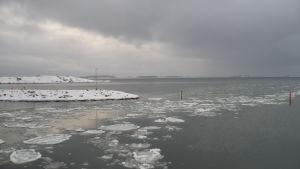 Vinterstrand och hav med isflak.