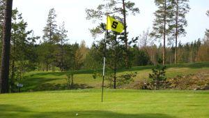 En golfbana på sommaren.