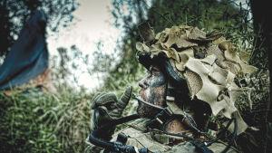 Kuva dokumentista Armadillo