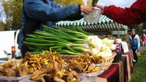 Matmarknad i Ingå