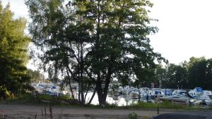 Småbåtshamn i Hangöby i Hangö.